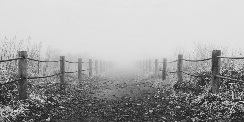 Fog and Cold