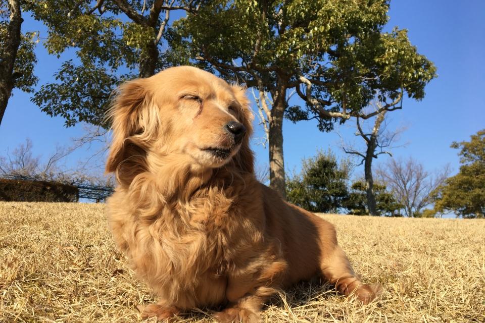 Nozomi Enjoying Freedom