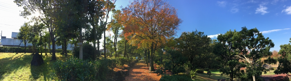 The Southern Walking Path