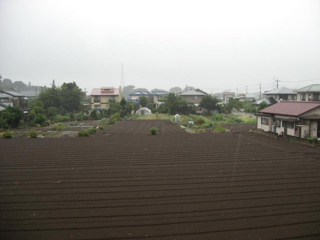 Heavy Rain in Kashiwa