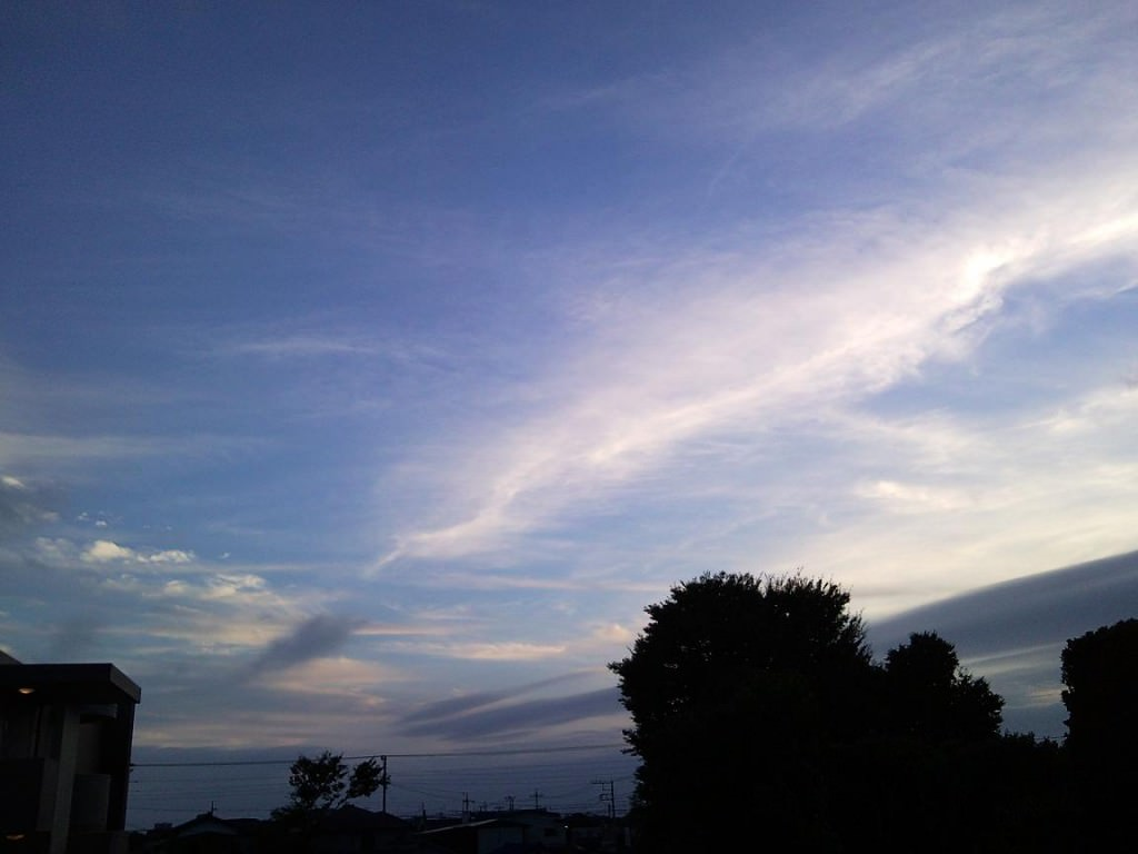 Kashiwa Sunset