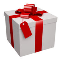 A Wrapped Present with a Bow
